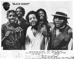 Black Sheep 1981