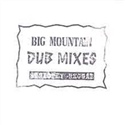 Big Mountain 1993 Strictly Reggae Dub
