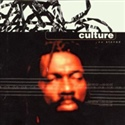Culture 1997 Stoned