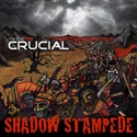 The Band Crucial 2008 Shadow Stampede