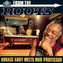 Horace Andy 2004 Meets Mad Proffesor   From The Roots