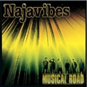 Najavibes 2011 Musical Road