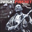Dwight Pinkney 1999 Jamaican Memories By The Score