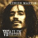 Junior Marvin 2007 Wailin For Love