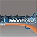 Various Artists 2003 Live From Bonnaroo